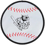 10 inch Baseball Flexible Flyers